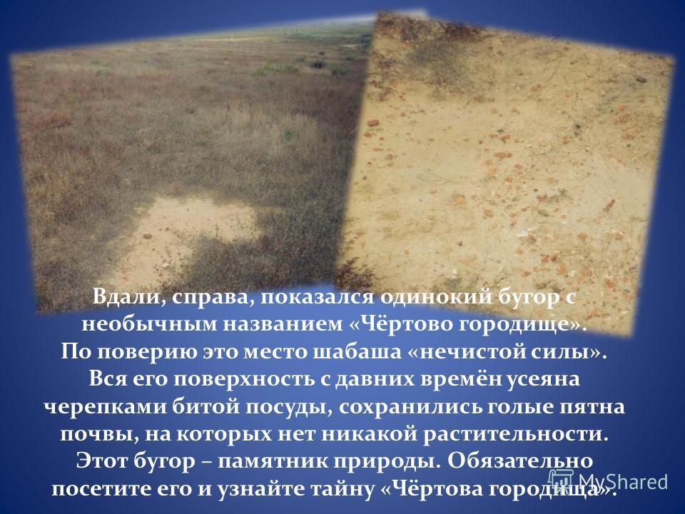 Вдали, справа, показался одинокий бугор с необычным названием «Чёртово городище». По поверию это место шабаша «нечистой силы». Вся его поверхность с давних времён усеяна черепками битой посуды, сохранились голые пятна почвы, на которых нет никакой ра