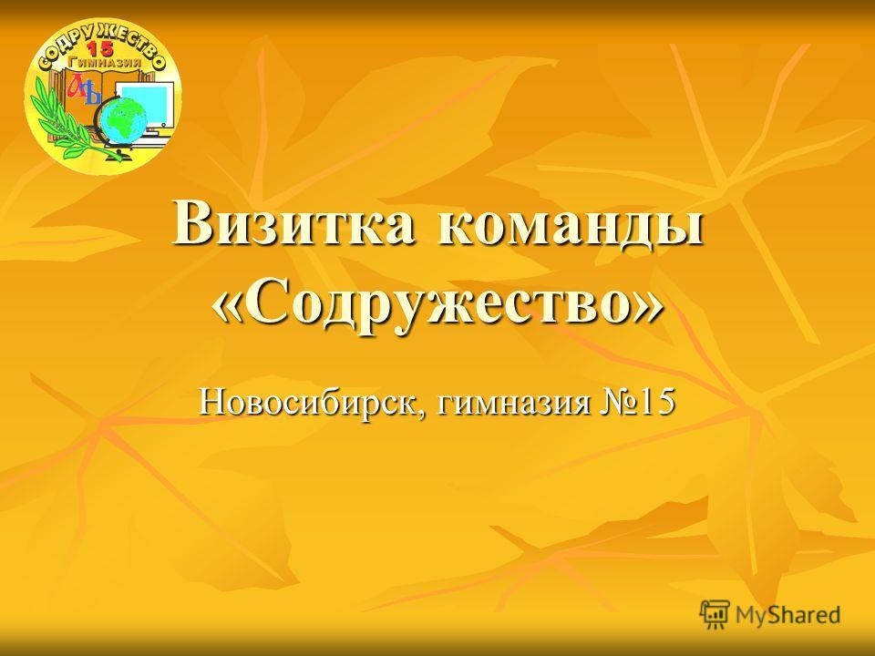 Визитка команды «Содружество» Новосибирск, гимназия 15