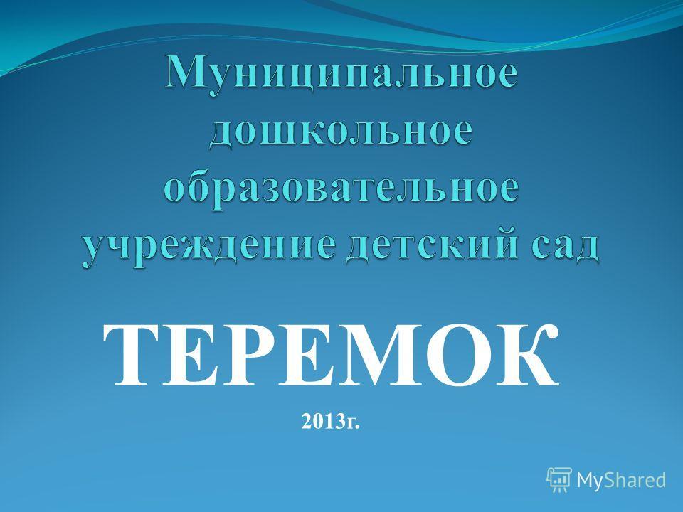 ТЕРЕМОК 2013г.