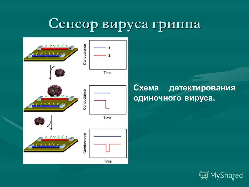 8 Сенсор вируса гриппа Схема детектирования одиночного вируса.