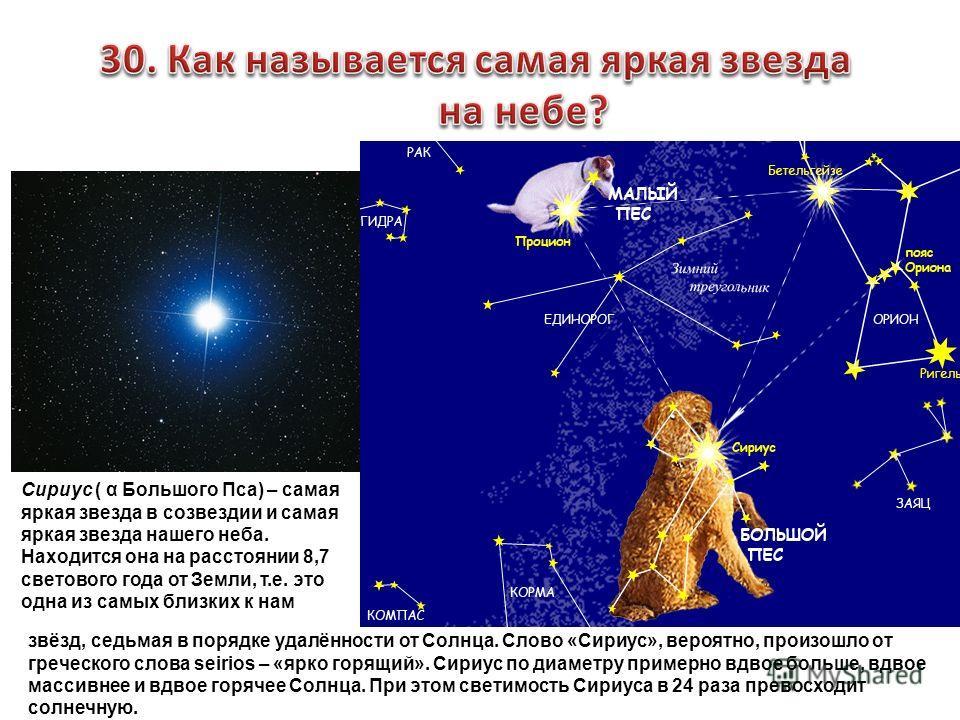 Сириус ( α Большого Пса) – самая яркая звезда в созвездии и самая яркая звезда нашего неба. Находится она на расстоянии 8,7 светового года от Земли, т.е. это одна из самых близких к нам звёзд, седьмая в порядке удалённости от Солнца. Слово «Сириус»,