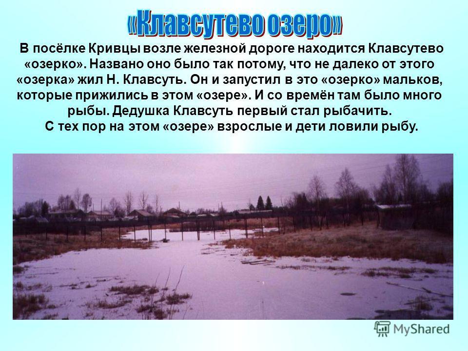 В посёлке Кривцы возле железной дороге находится Клавсутево «озерко». Названо оно было так потому, что не далеко от этого «озерка» жил Н. Клавсуть. Он и запустил в это «озерко» мальков, которые прижились в этом «озере». И со времён там было много рыб