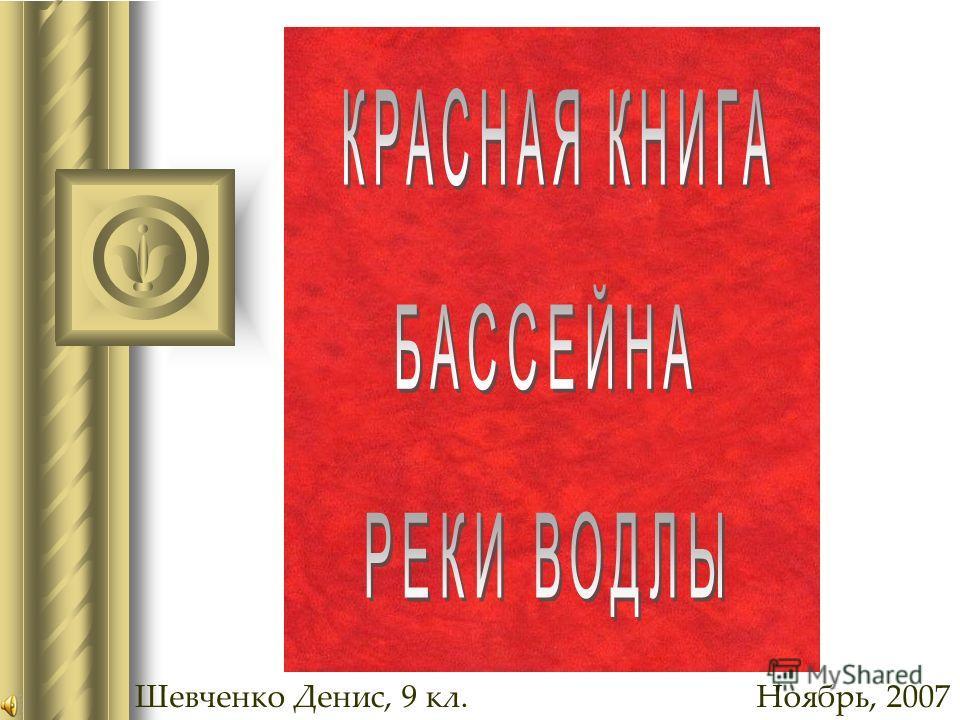 Шевченко Денис, 9 кл.Ноябрь, 2007