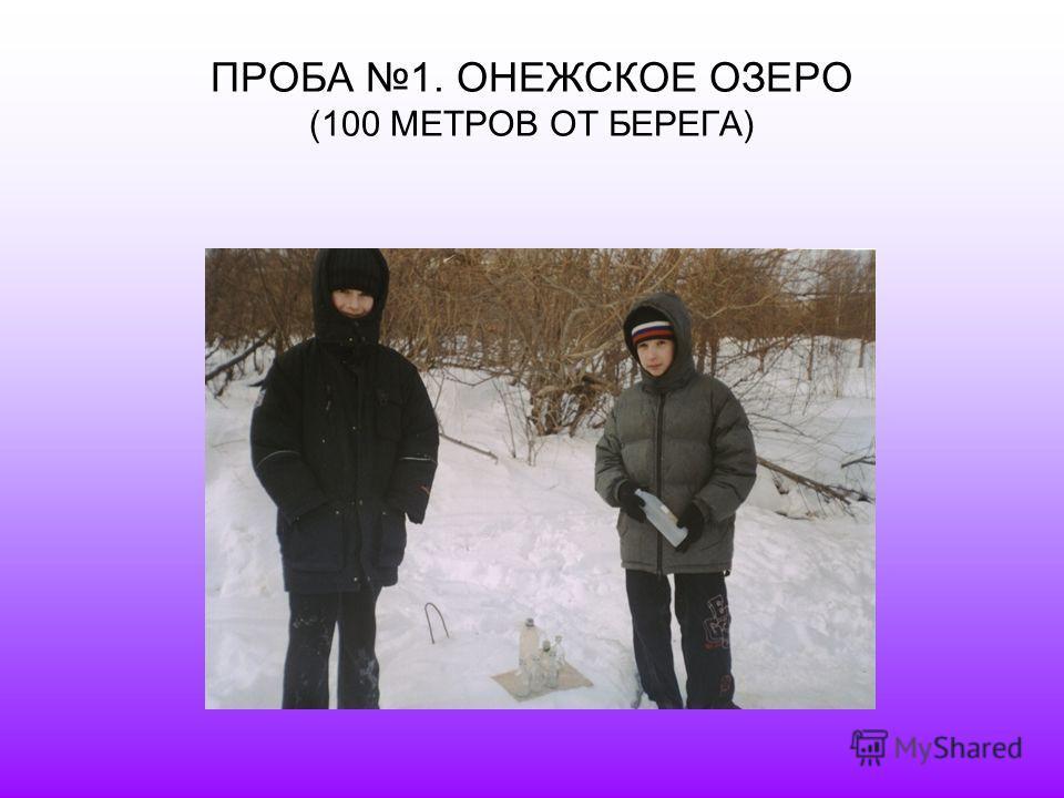 ПРОБА 1. ОНЕЖСКОЕ ОЗЕРО (100 МЕТРОВ ОТ БЕРЕГА)