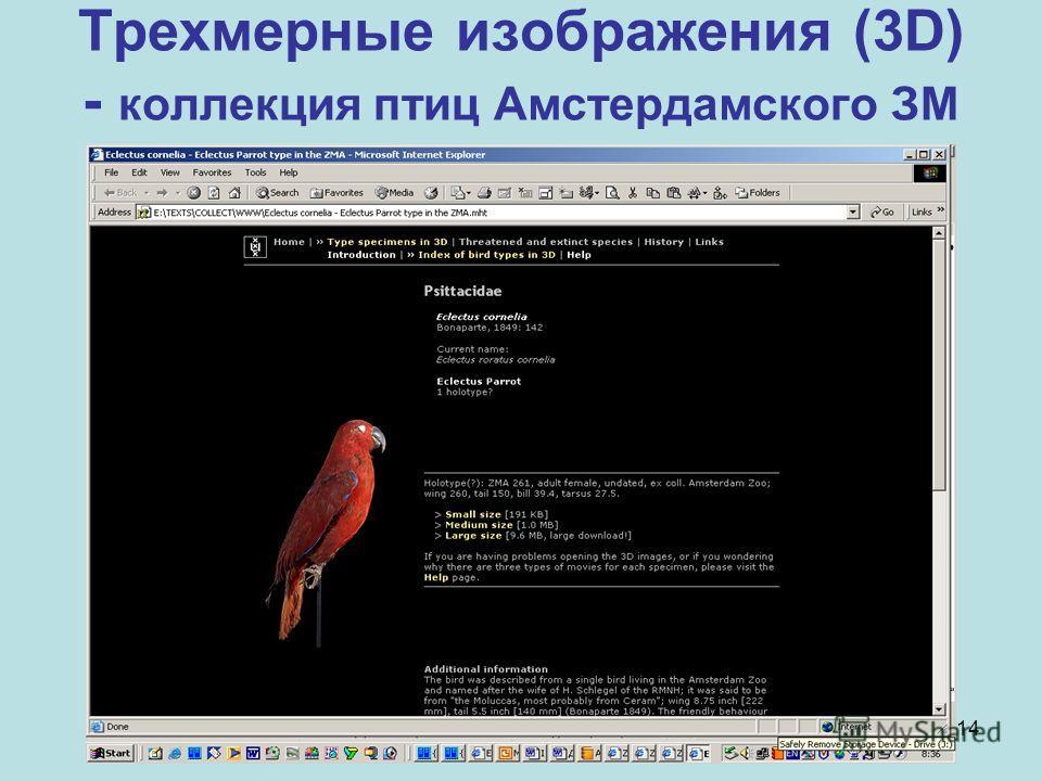 14 Трехмерные изображения (3D) - коллекция птиц Амстердамского ЗМ