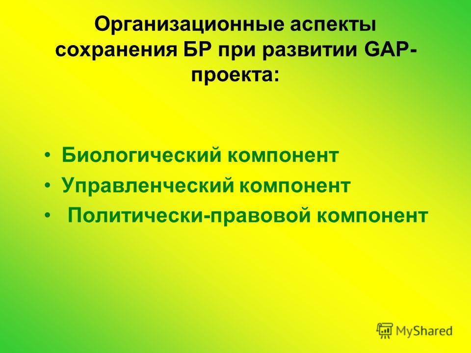 Организационные аспекты сохранения БР при развитии GAP- проекта: Биологический компонент Управленческий компонент Политически-правовой компонент