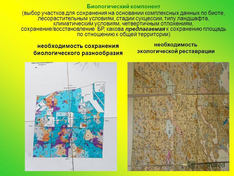 необходимость сохранения биологического разнообразия необходимость экологической реставрации Биологический компонент (выбор участков для сохранения на основании комплексных данных по биоте, лесорастительным условиям, стадии сукцессии, типу ландшафта,