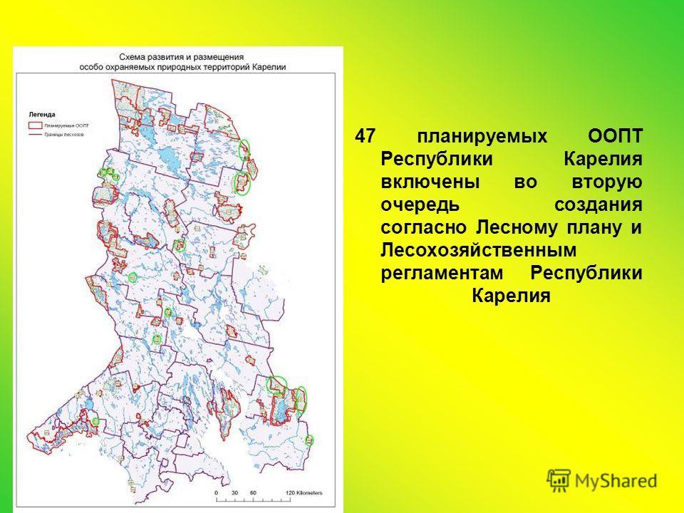 47 планируемых ООПТ Республики Карелия включены во вторую очередь создания согласно Лесному плану и Лесохозяйственным регламентам Республики Карелия