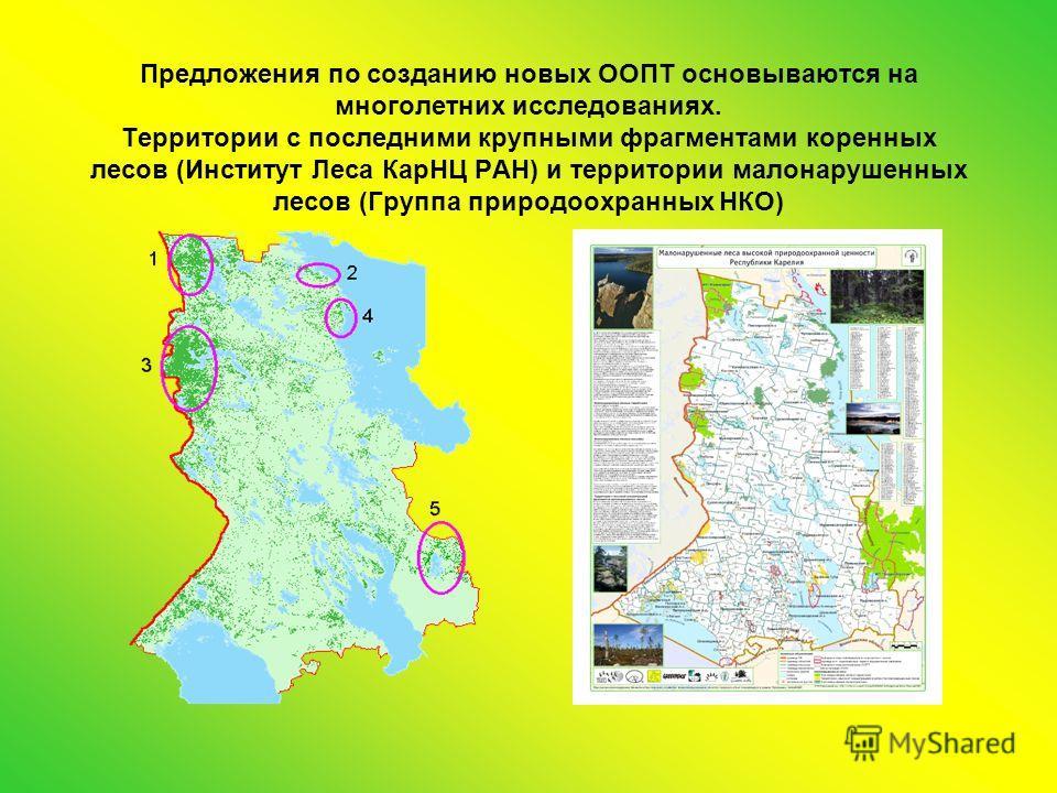Предложения по созданию новых ООПТ основываются на многолетних исследованиях. Территории с последними крупными фрагментами коренных лесов (Институт Леса КарНЦ РАН) и территории малонарушенных лесов (Группа природоохранных НКО)