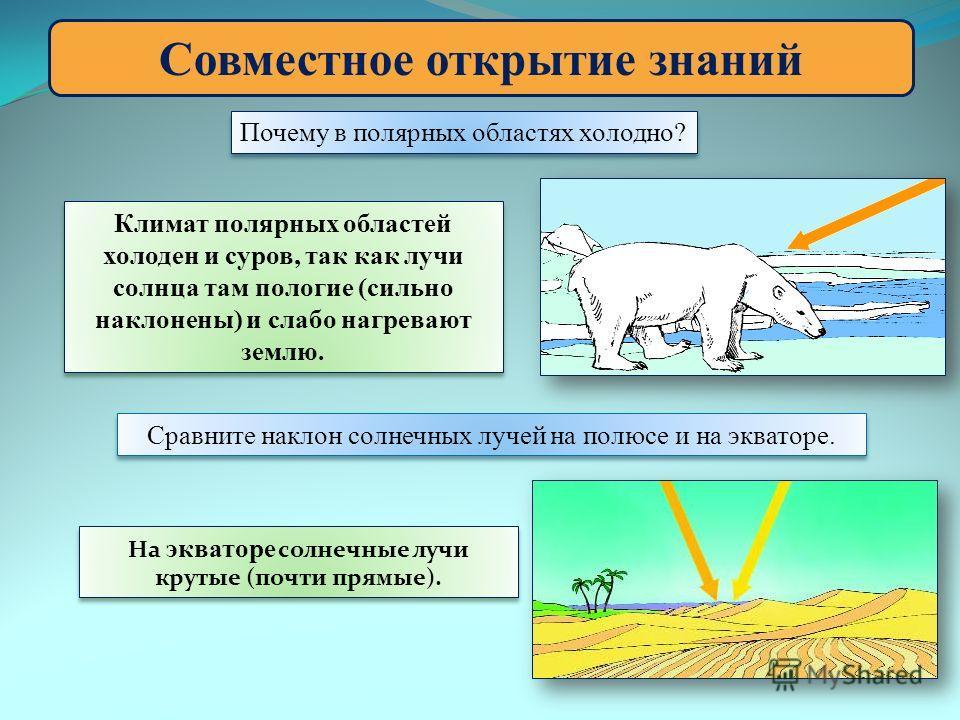 Совместное открытие знаний Почему в полярных областях холодно? Климат полярных областей холоден и суров, так как лучи солнца там пологие (сильно наклонены) и слабо нагревают землю. Сравните наклон солнечных лучей на полюсе и на экваторе. На экваторе