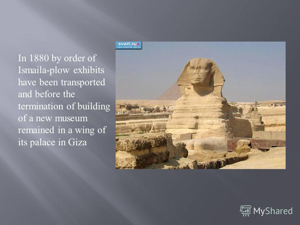 In 1880 by order of Ismaila-plow exhibits have been transported and before the termination of building of a new museum remained in a wing of its palace in Giza