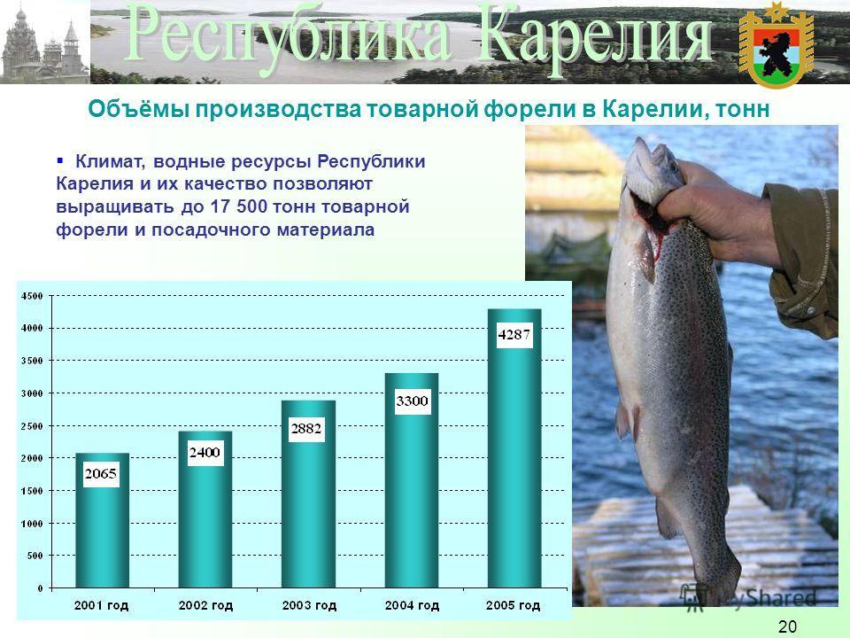 20 Объёмы производства товарной форели в Карелии, тонн Климат, водные ресурсы Республики Карелия и их качество позволяют выращивать до 17 500 тонн товарной форели и посадочного материала