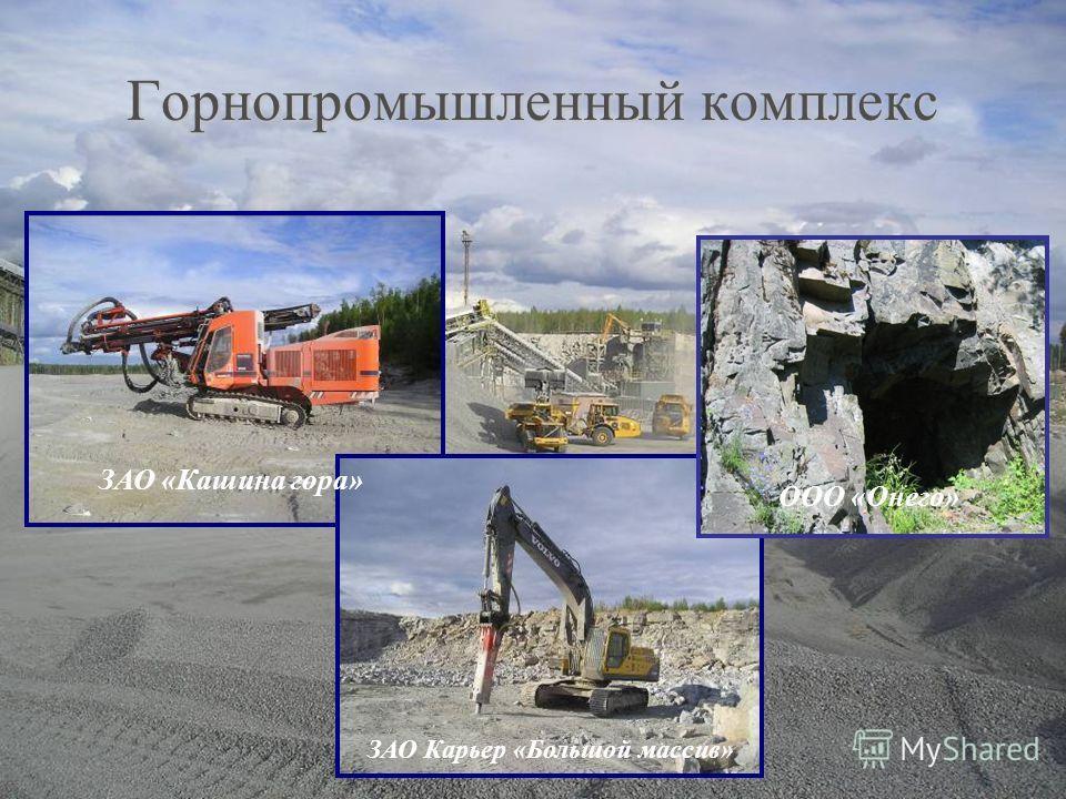 Горнопромышленный комплекс ЗАО «Кашина гора» ЗАО Карьер «Большой массив» ООО «Онего»