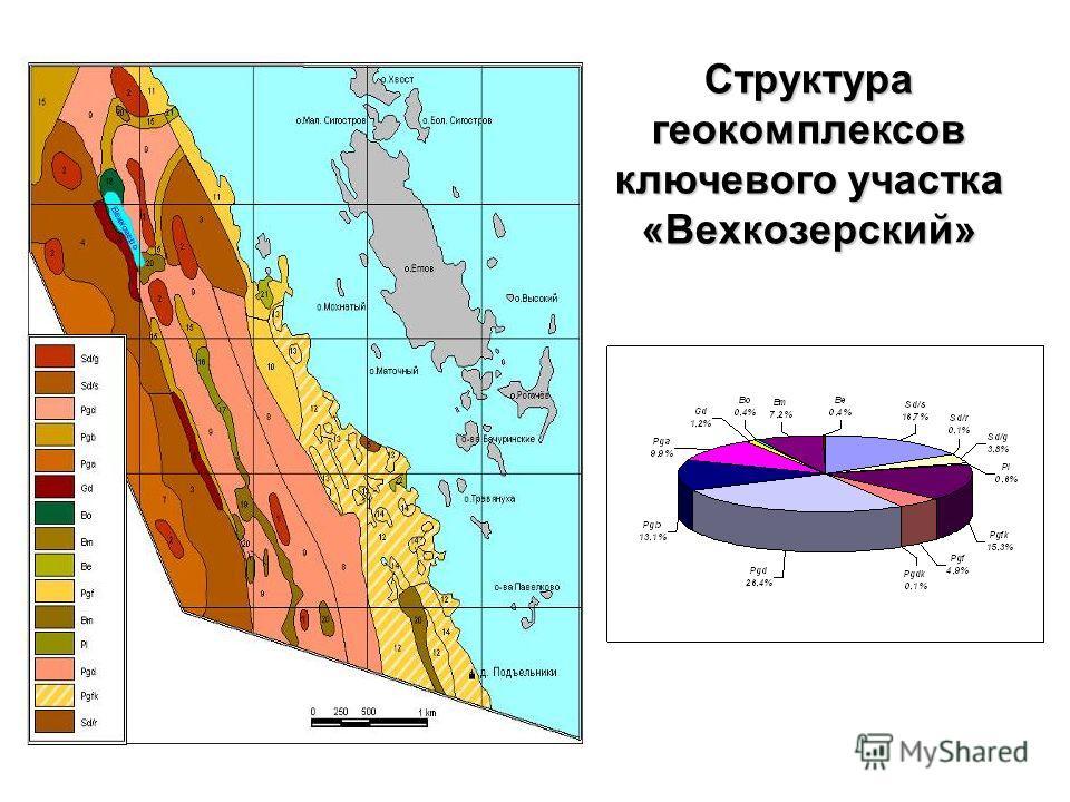 Структура геокомплексов ключевого участка «Вехкозерский»