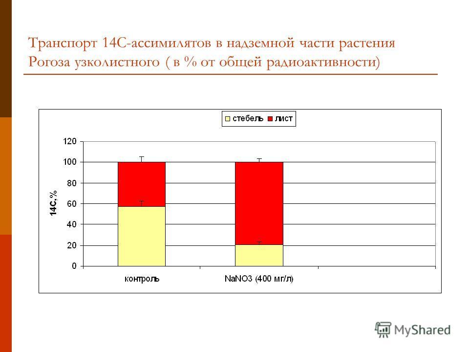 Транспорт 14С-ассимилятов в надземной части растения Рогоза узколистного ( в % от общей радиоактивности)