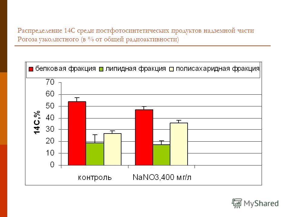 Распределение 14С среди постфотосинтетических продуктов надземной части Рогоза узколистного (в % от общей радиоактивности)