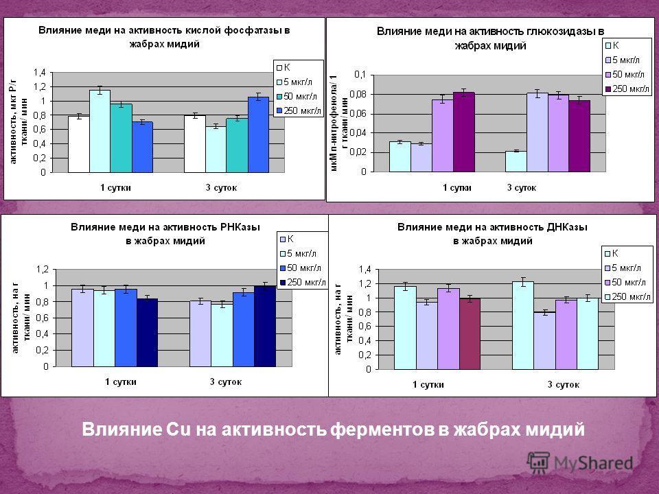 Влияние Cu на активность ферментов в жабрах мидий