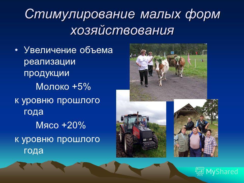 Стимулирование малых форм хозяйствования Увеличение объема реализации продукции Молоко +5% к уровню прошлого года Мясо +20% к уровню прошлого года