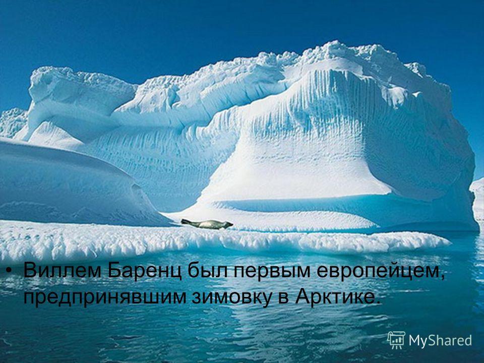 Виллем Баренц был первым европейцем, предпринявшим зимовку в Арктике.