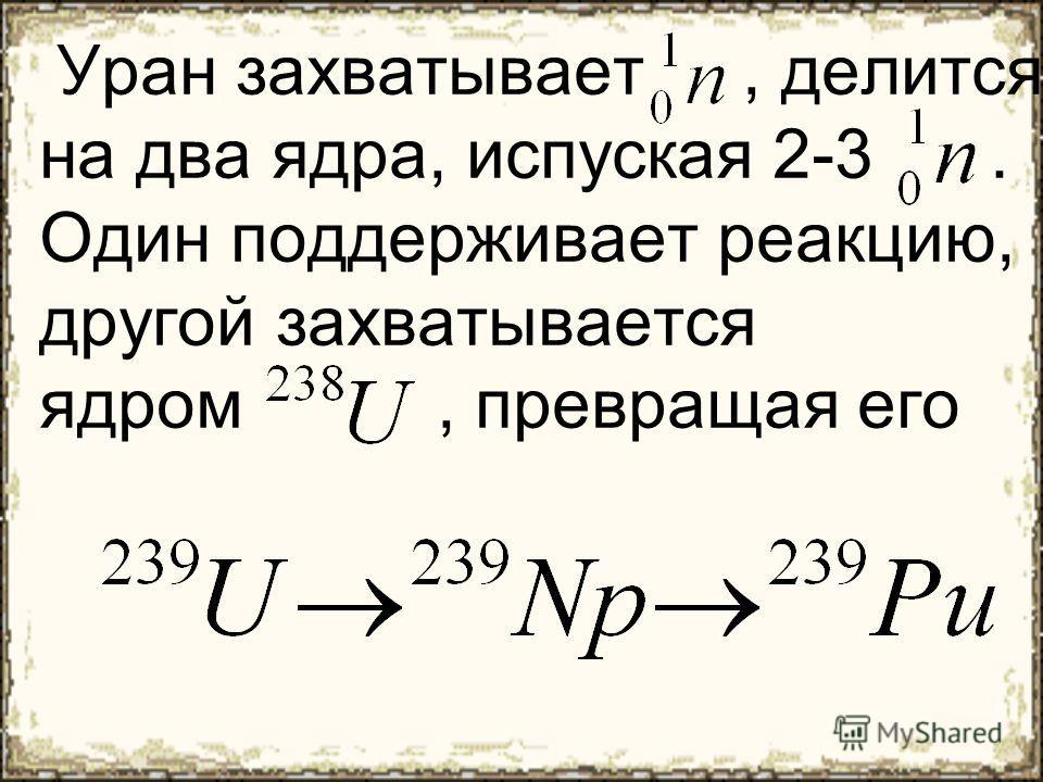 Уран захватывает, делится на два ядра, испуская 2-3. Один поддерживает реакцию, другой захватывается ядром, превращая его