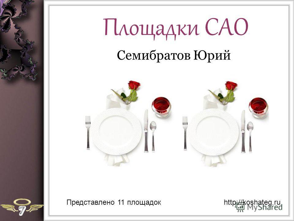 Площадки САО Семибратов Юрий Представлено 11 площадокhttp://koshateg.ru