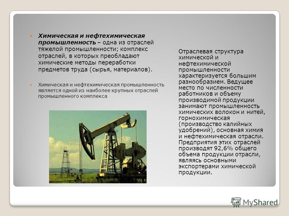 Отраслевая структура химической и нефтехимической промышленности характеризуется большим разнообразием. Ведущее место по численности работников и объему производимой продукции занимают промышленность химических волокон и нитей, горнохимическая (произ