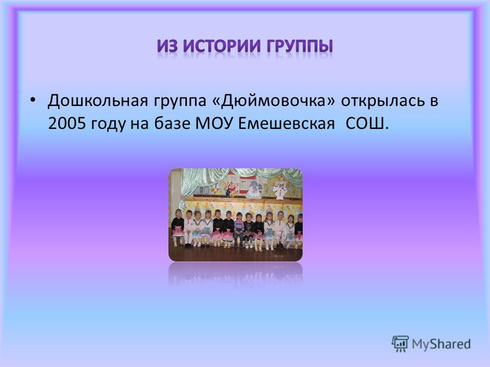 Дошкольная группа «Дюймовочка» открылась в 2005 году на базе МОУ Емешевская СОШ.