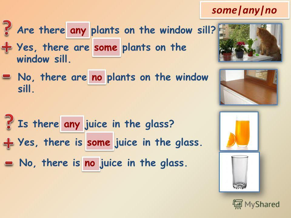 some|any|no Are there any plants on the window sill? Yes, there are some plants on the window sill. No, there are no plants on the window sill. Is there any juice in the glass? Yes, there is some juice in the glass. No, there is no juice in the glass