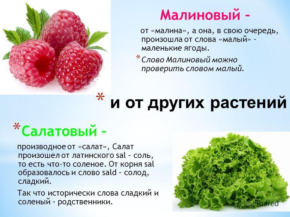 * Салатовый – производное от «салат», Салат произошел от латинского sal – соль, то есть что-то соленое. От корня sal образовалось и слово sald – солод, сладкий. Так что исторически слова сладкий и соленый – родственники. Малиновый – от «малина», а он