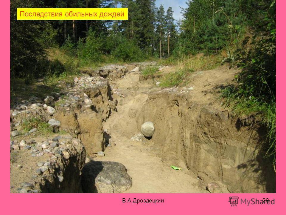 В.А.Дроздецкий29 Последствия обильных дождей