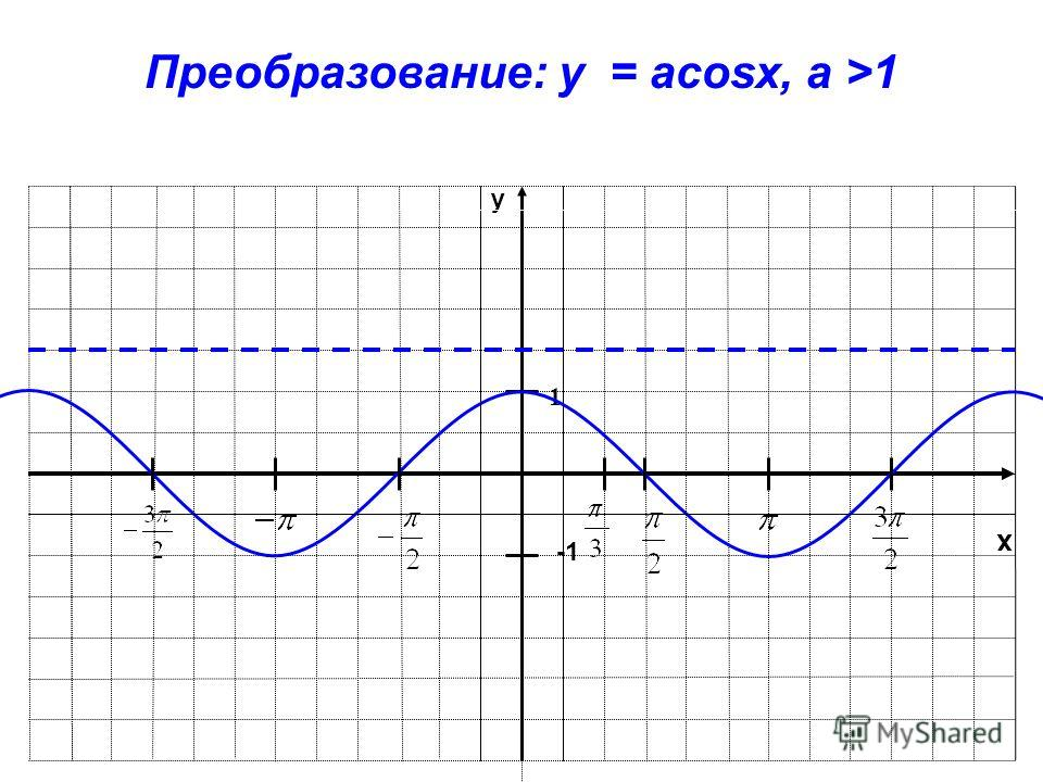 x y 1 Преобразование: y = acosx, a >1
