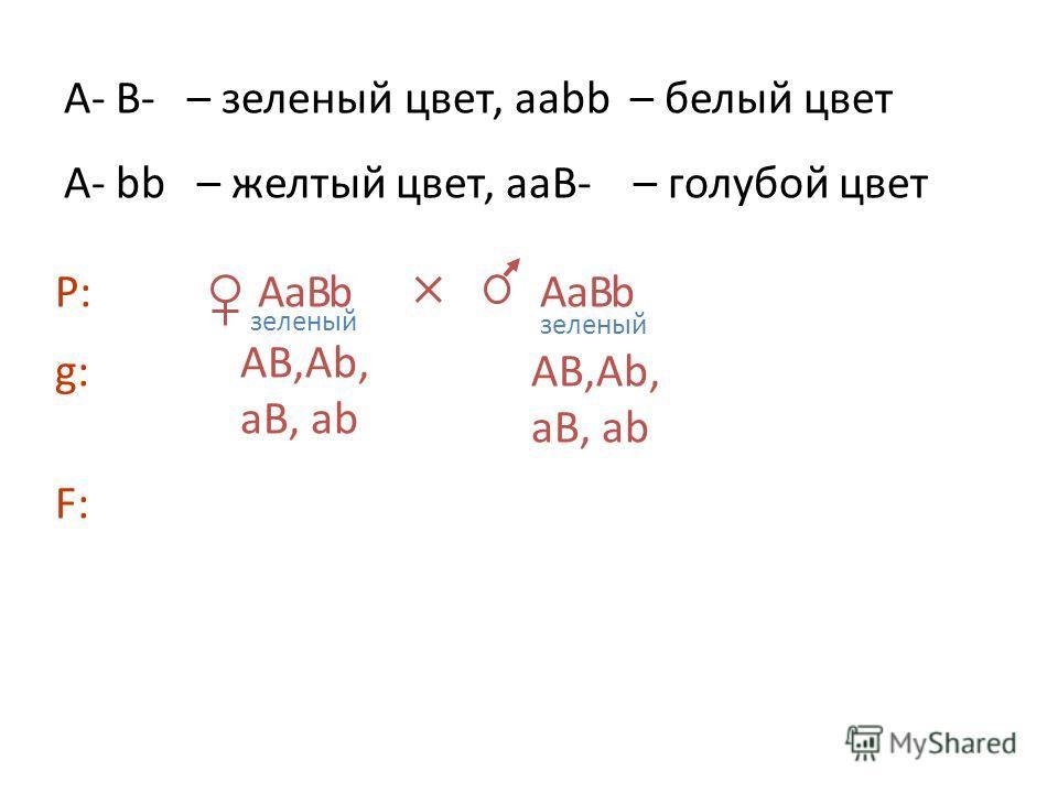 A В а bА В а b A- B- – зеленый цвет, aаbb – белый цвет А- bb – желтый цвет, ааВ- – голубой цвет Р: g:g: АВ,Аb, аВ, аb F:F: зеленый АВ,Аb, аВ, аb