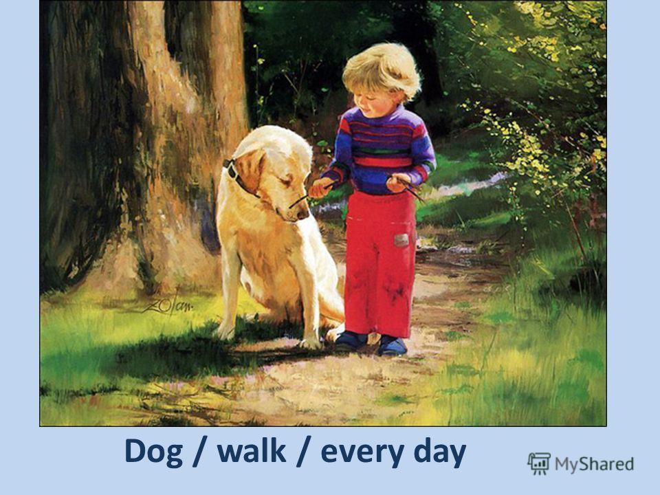 Dog / walk / every day