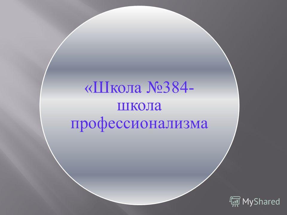«Школа 384-школа профессионализма