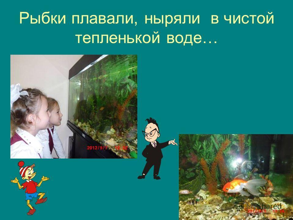 Рыбки плавали, ныряли в чистой тепленькой воде…