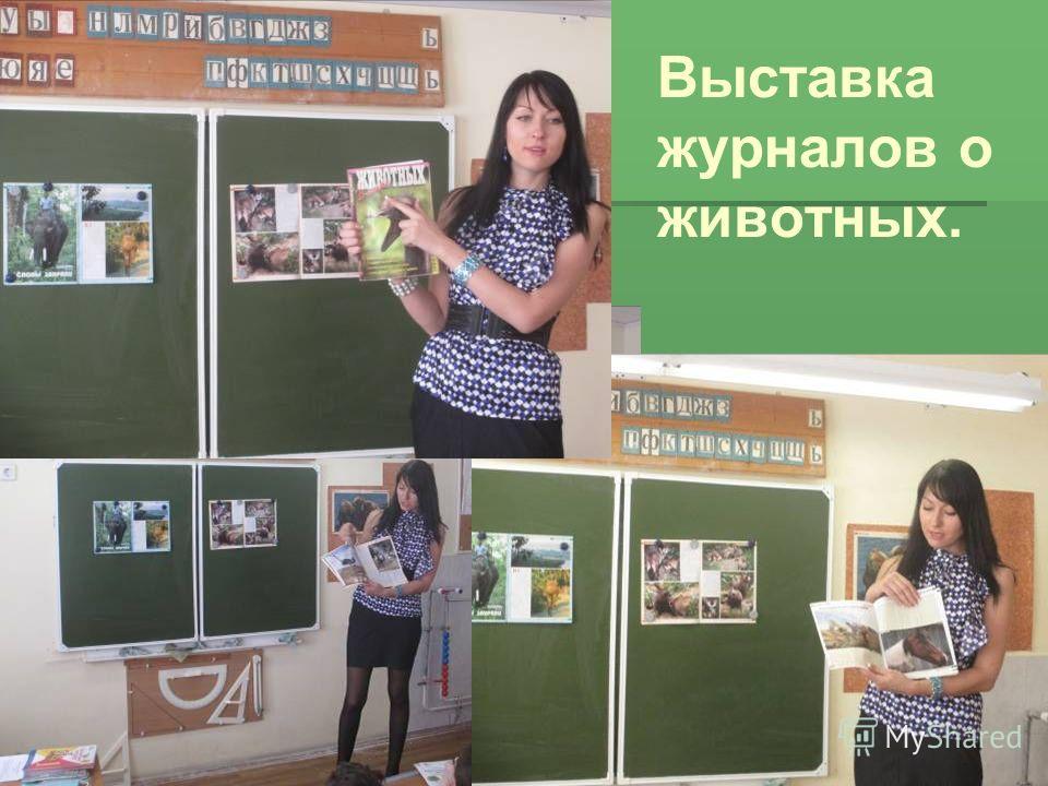Выставка журналов о животных.