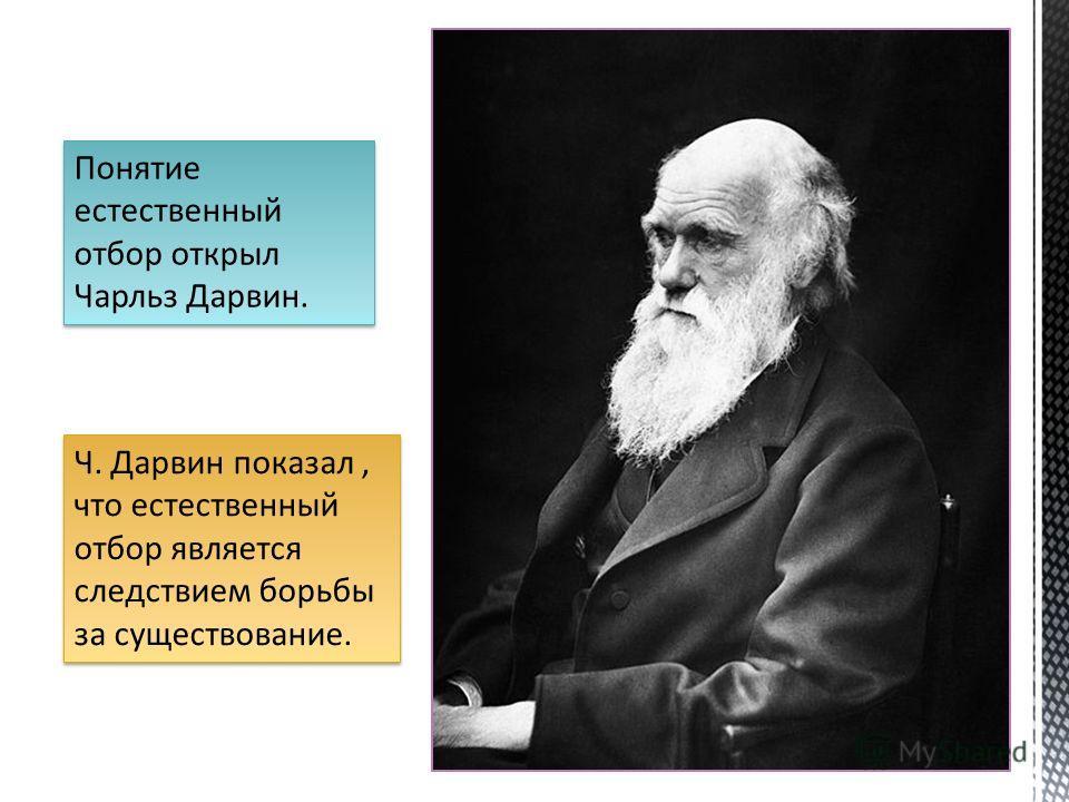 Ч. Дарвин показал, что естественный отбор является следствием борьбы за существование. Понятие естественный отбор открыл Чарльз Дарвин.