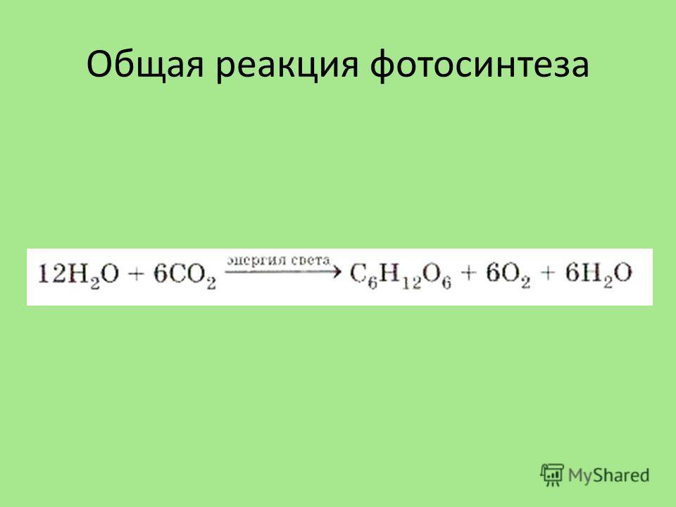 Общая реакция фотосинтеза