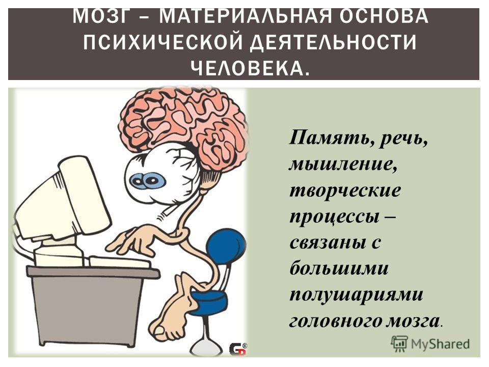 МОЗГ – МАТЕРИАЛЬНАЯ ОСНОВА ПСИХИЧЕСКОЙ ДЕЯТЕЛЬНОСТИ ЧЕЛОВЕКА. Память, речь, мышление, творческие процессы – связаны с большими полушариями головного мозга.
