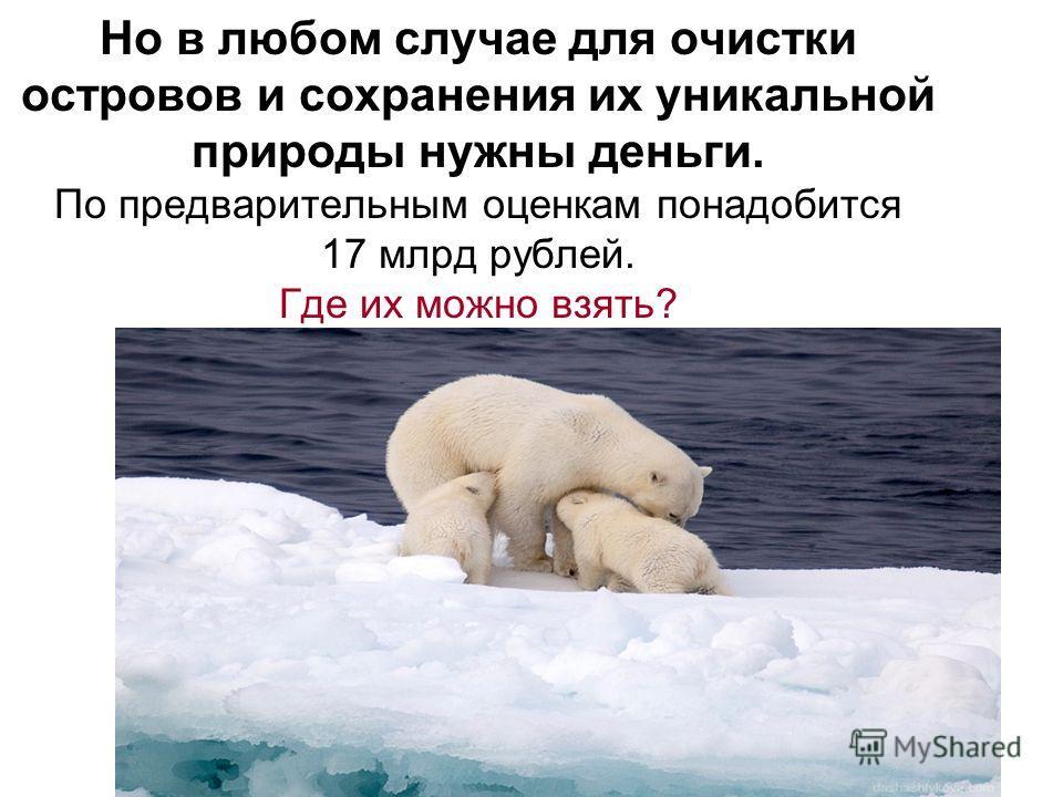 Но в любом случае для очистки островов и сохранения их уникальной природы нужны деньги. По предварительным оценкам понадобится 17 млрд рублей. Где их можно взять?