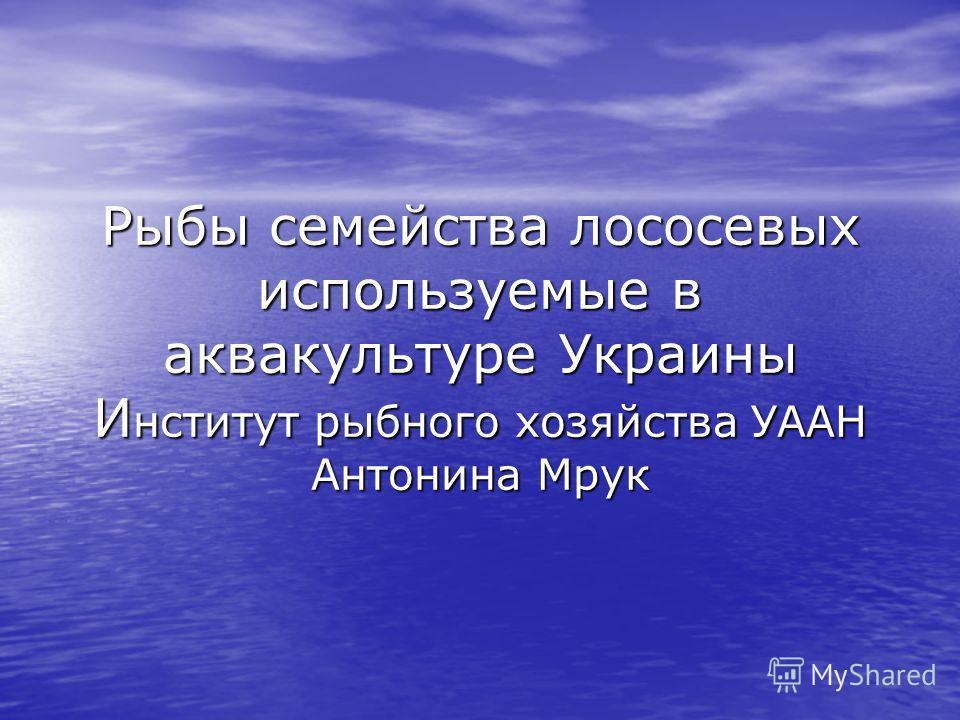 Рыбы семейства лососевых используемые в аквакультуре Украины И нститут рыбного хозяйства УААН Антонина Мрук