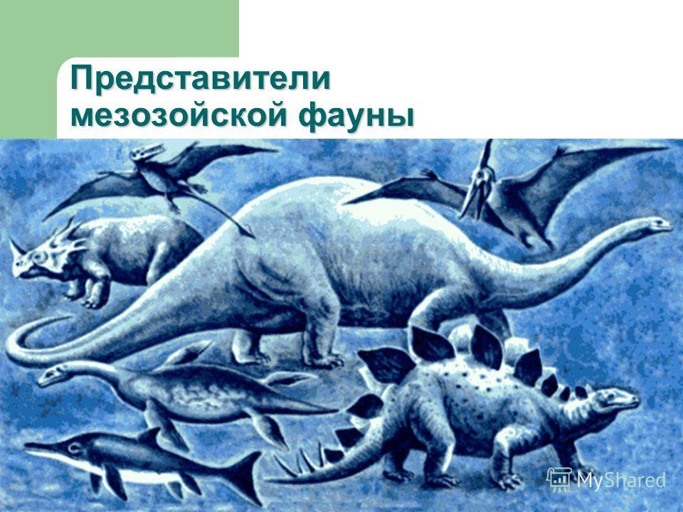 Представители мезозойской фауны