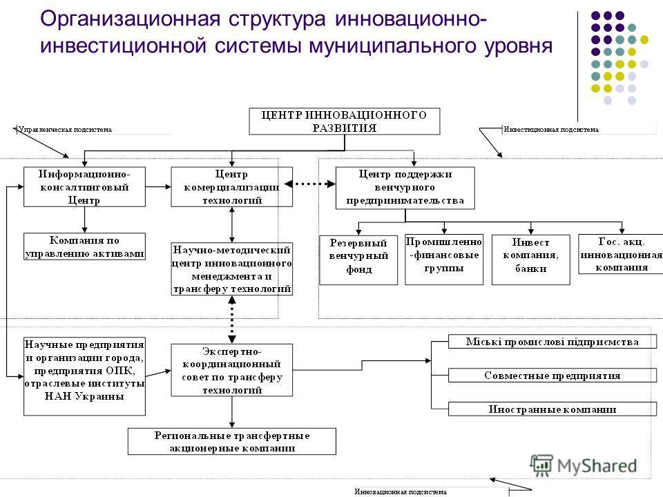 Организационная структура инновационно- инвестиционной системы муниципального уровня