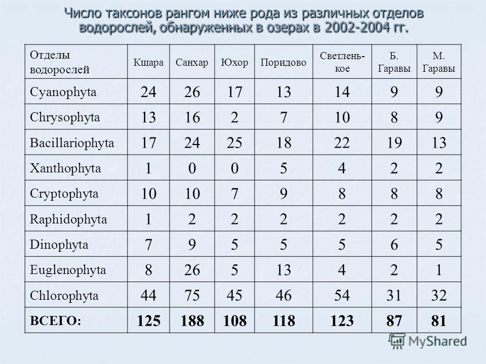 Число таксонов рангом ниже рода из различных отделов водорослей, обнаруженных в озерах в 2002-2004 гг. Отделы водорослей КщараСанхарЮхорПоридово Светлень- кое Б. Гаравы М. Гаравы Cyanophyta 242617131499 Chrysophyta 1316271089 Bacillariophyta 17242518