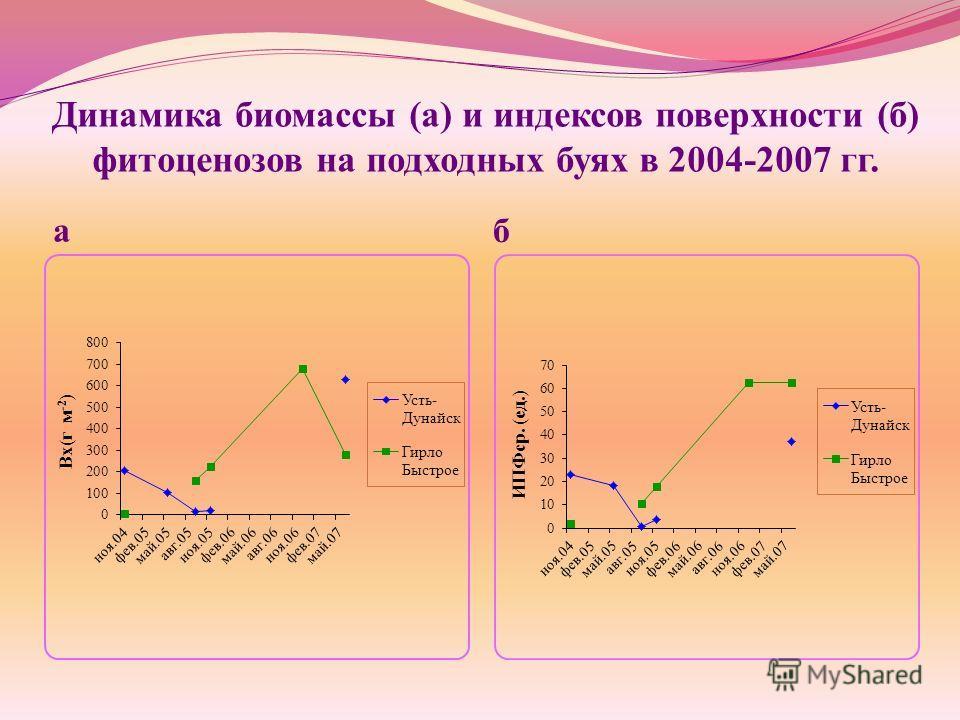 Динамика биомассы (а) и индексов поверхности (б) фитоценозов на подходных буях в 2004-2007 гг. а б