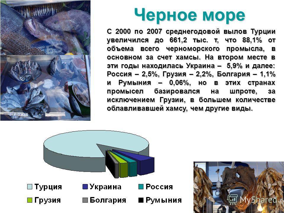 С 2000 по 2007 среднегодовой вылов Турции увеличился до 661,2 тыс. т, что 88,1% от объема всего черноморского промысла, в основном за счет хамсы. На втором месте в эти годы находилась Украина – 5,9% и далее: Россия – 2,5%, Грузия – 2,2%, Болгария – 1