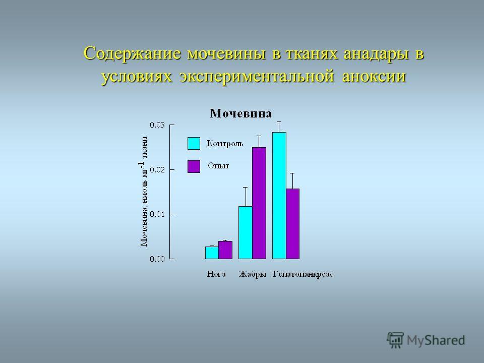 Cодержание мочевины в тканях анадары в условиях экспериментальной аноксии