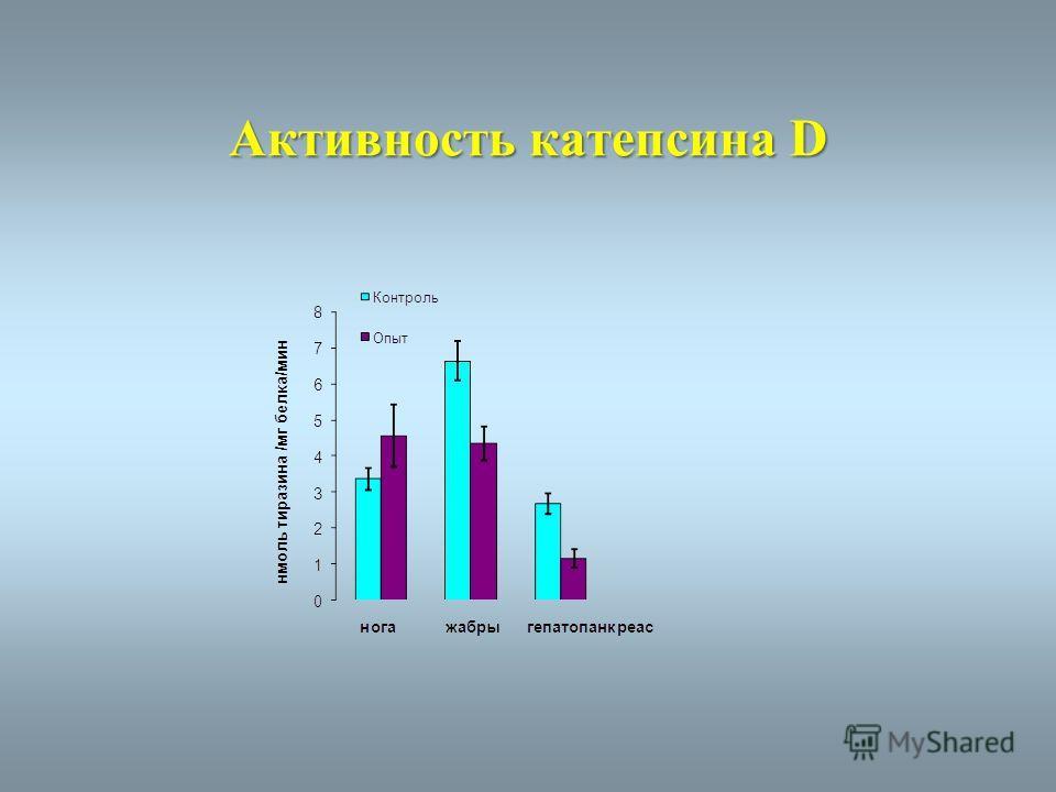 Активность катепсина D