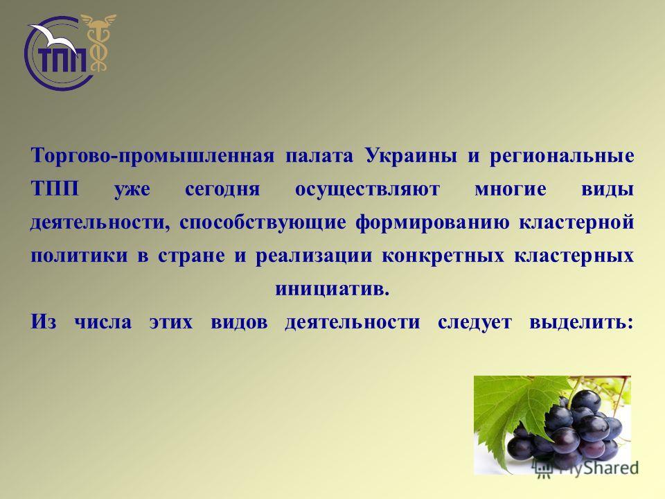 Торгово-промышленная палата Украины и региональные ТПП уже сегодня осуществляют многие виды деятельности, способствующие формированию кластерной политики в стране и реализации конкретных кластерных инициатив. Из числа этих видов деятельности следует