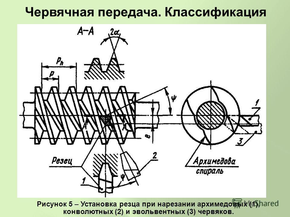 Рисунок 5 – Установка резца при нарезании архимедовых (1), конволютных (2) и эвольвентных (3) червяков. Червячная передача. Классификация